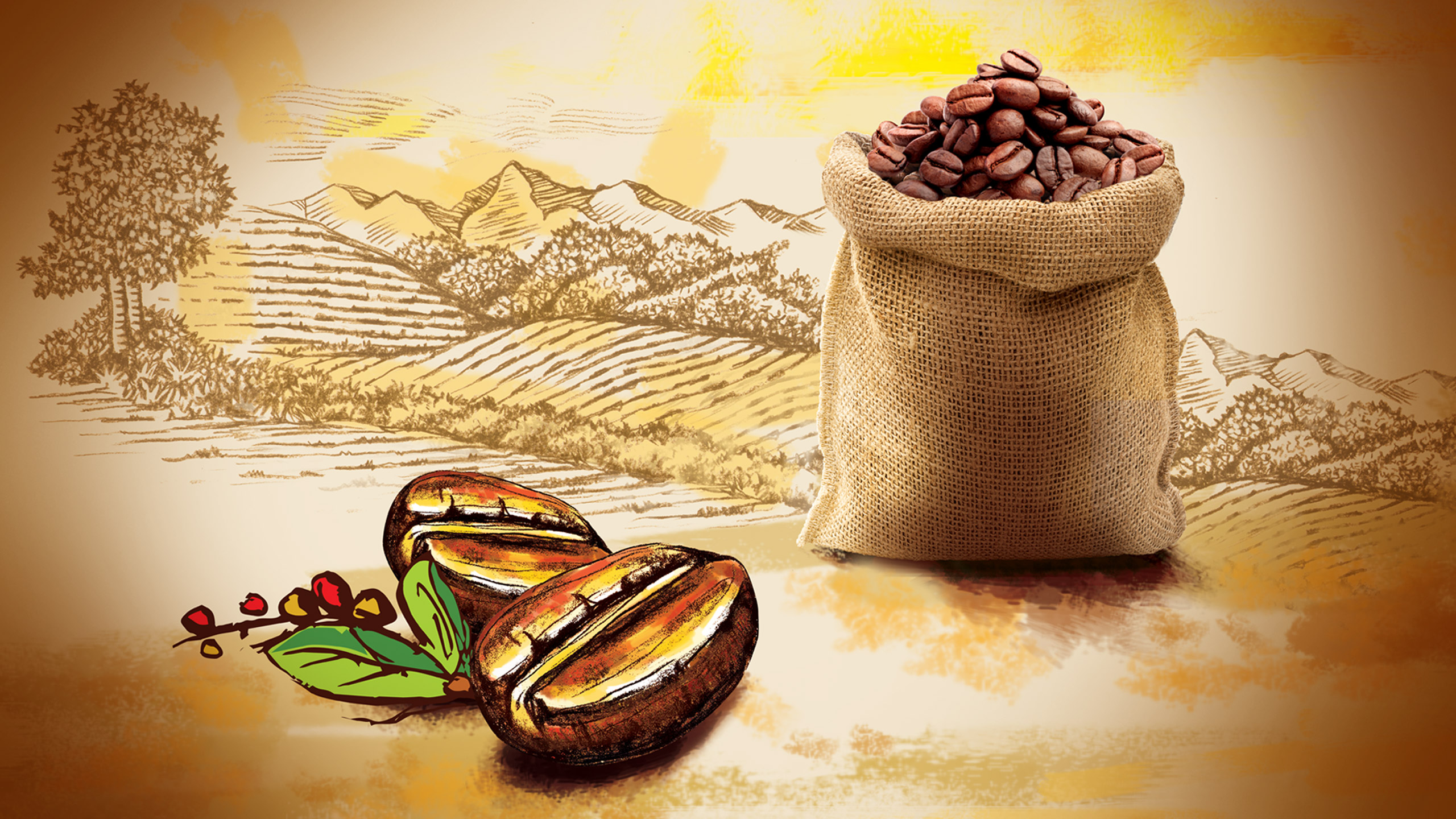 Illustration and visual styling for TATA Coffee Grand