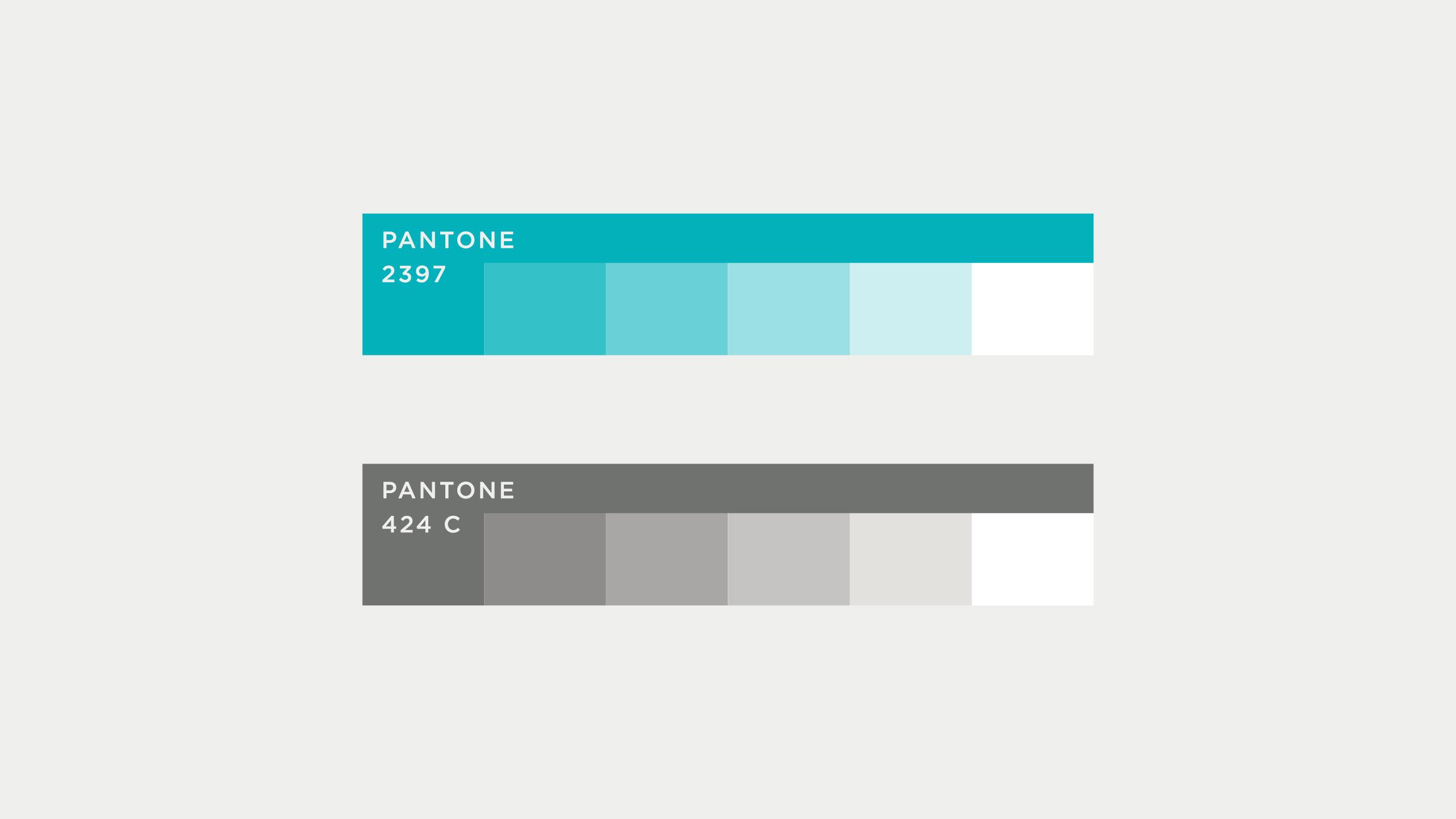 Colour palette and pantone colour values for Advamedica branding